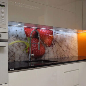Glass Wall Panel 1